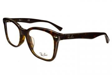 亚虎娱乐官网登入_雷朋Ray-Ban_5285F 2012_高级精品板材_玳瑁色_男女通用全框眼镜框